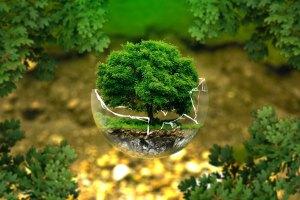 environmental-protection-32